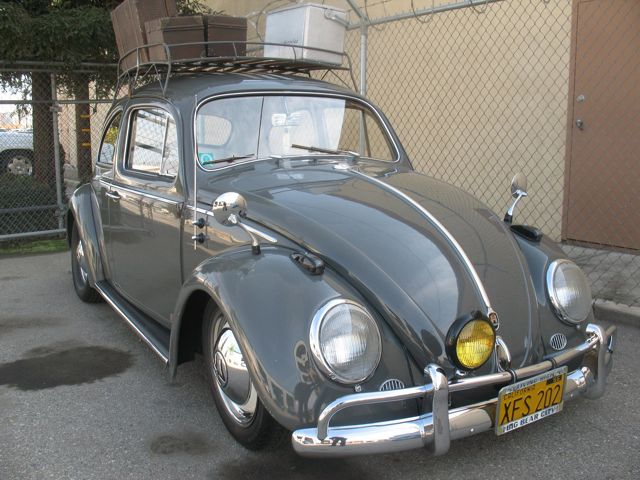 beetle mirrors