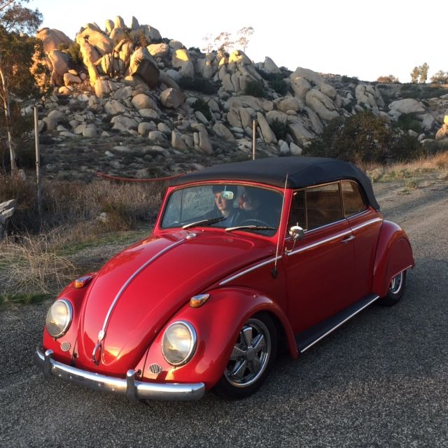 1967 Vw Beetle Show Car For Sale Oldbug Com: 1965 Volkswagen Beetle - Classic
