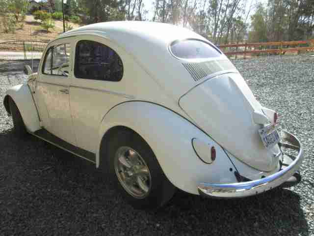 1955 Vw Beetle Sedan For Sale Oldbug Com