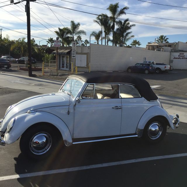 1967 Vw Beetle Show Car For Sale Oldbug Com: 1960 VW Beetle Convertible For Sale @ Oldbug.com