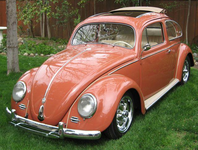 1956 Euro Oval Ragtop Vw Beetle For Sale   Oldbug Com