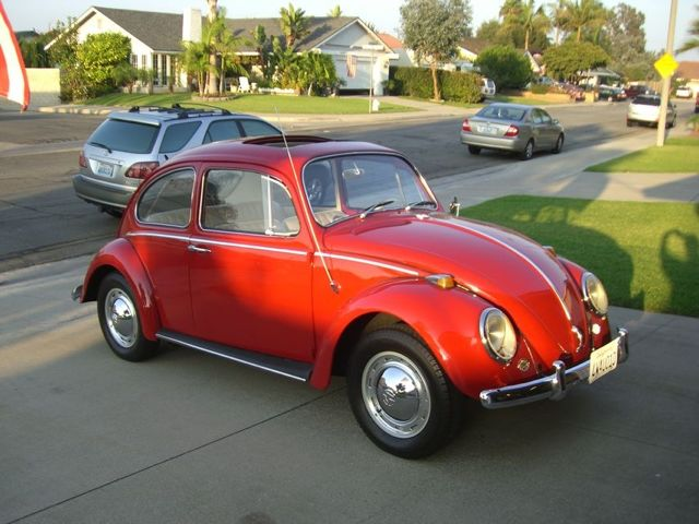 1965 vw beetle with factory sunroof for sale. Black Bedroom Furniture Sets. Home Design Ideas
